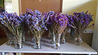 Fresh lavender bouquets are in the vases.