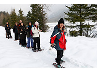 People are snowshoeing